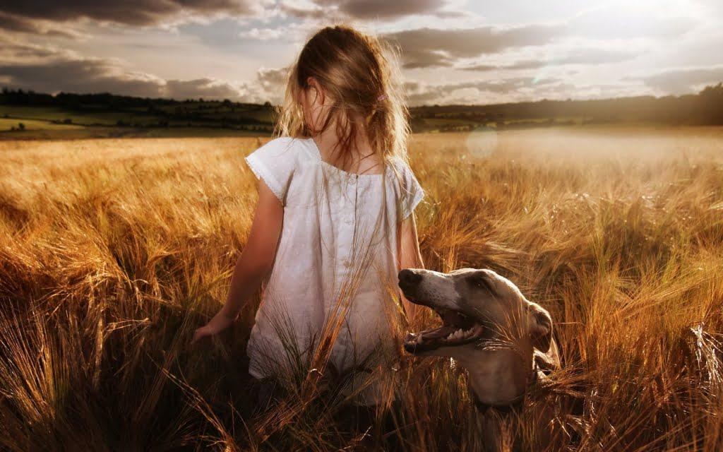 Συμπεριφορά σκύλου