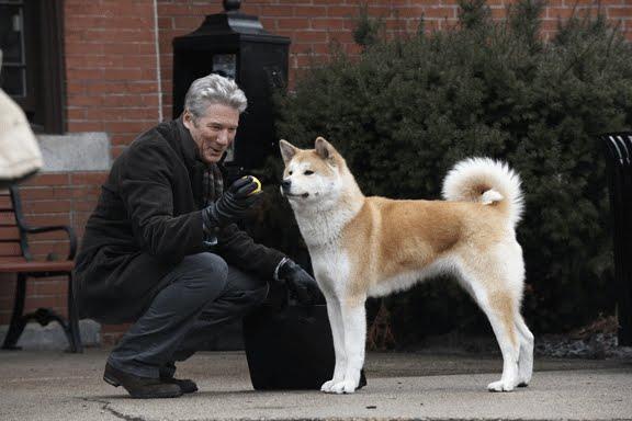 hatciko σκύλος παιχνίδι
